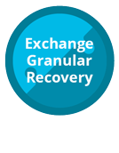 Paragon Exchange Granular Recovery 12